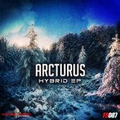 Hybrid Ep by Arcturus