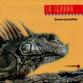 Play & Download La La Iguana: Sones Jarochos by Sones Jarochos | Napster