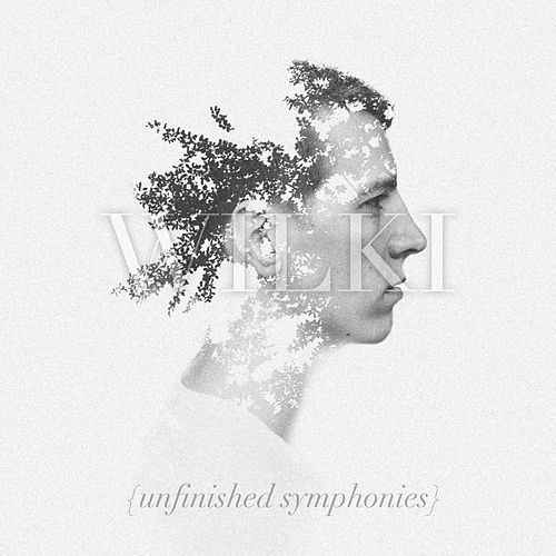 Unfinished Symphonies by Wilki