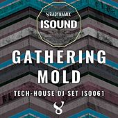 Play & Download Gathering Mold by Various | Napster