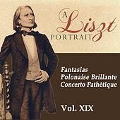 A Liszt Portrait, Vol. XIX by Louis Lortie