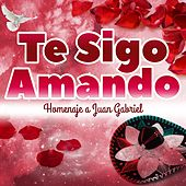 Play & Download Te Sigo Amando - Homenaje a Juan Gabriel by Various Artists | Napster