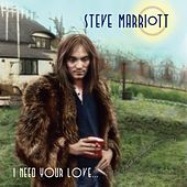 I Need Your Love (Like a Fish Needs a Raincoat) by Steve Marriott
