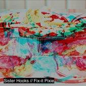 Fix-It Pixie de Sister Hooks