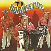 Play & Download Meu Eterno Xodó by Trio Nordestino | Napster