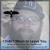 Play & Download I Didn't Mean to Leave You by ZIV | Napster