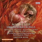 Reger: Orchestral Songs by Various Artists