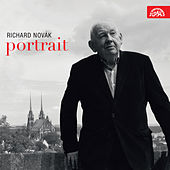 Play & Download Portrait by Richard Novák | Napster