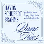 Hydn, Schubert, Brahms: Piano Trios by Valentin Feigin
