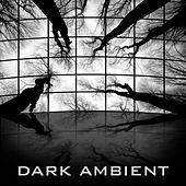 Play & Download Dark Ambient by Christopher Franke | Napster