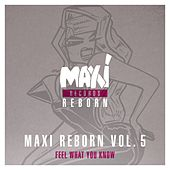Play & Download Maxi Reborn Vol. 5: Feel What You Know by Big Muff | Napster