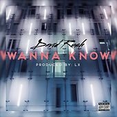 Wanna Know by David Rush