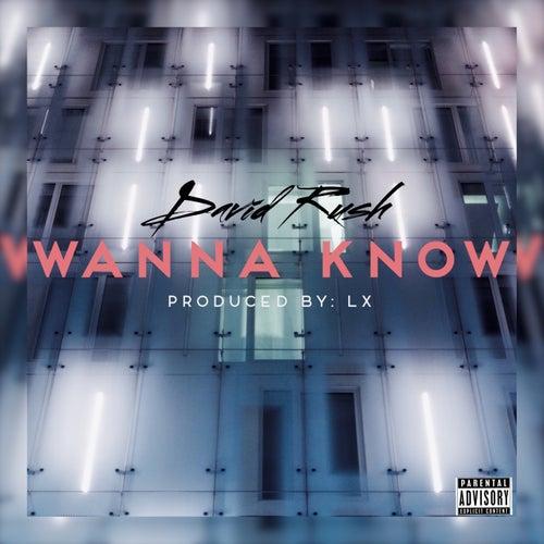 Wanna Know by David Rush
