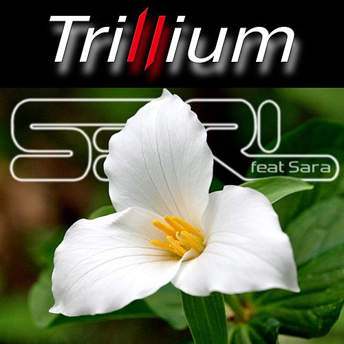 Play & Download Trillium (feat. Sara) by S3rl | Napster