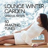 Lounge Winter Garden (50 Amazing Tunes) by Various Artists