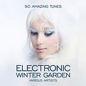 Play & Download Electronic Winter Garden (50 Amazing Tunes) by Various Artists | Napster