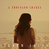A Thousand Cranes by Cigdem Aslan