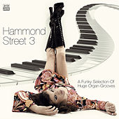 Play & Download Hammond Street 3 by Various Artists | Napster