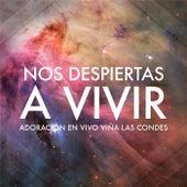 Nos Despiertas a Vivir: Adoración en Vivo Viña las Condes by Vineyard Worship