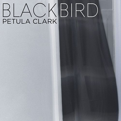Play & Download Blackbird by Petula Clark | Napster