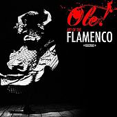 Ole! Art Of The Flamenco (Digitally Remastered) by Art Of Flamenco