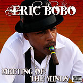 Meeting of the Minds by Eric Bobo