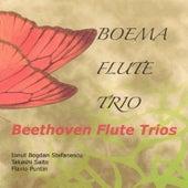 Play & Download Boema Flute Trio/Beethoven Flute Trio by Ion Bogdan Stefanescu | Napster