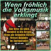 Play & Download Wenn fröhlich die Volksmusik erklingt by Various Artists | Napster