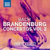 Play & Download Bach: Brandenburg Concertos Nos. 4-6 by Various Artists | Napster