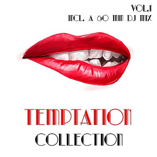 Temptation Collection, Vol. 1 - Selection of House Music by Various Artists