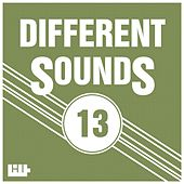 Different Sounds, Vol. 13 by Various Artists
