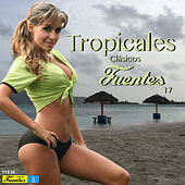 Play & Download Tropicales Clásicos Fuentes 17 by Various Artists | Napster