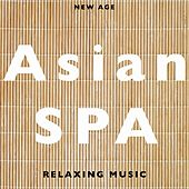 Play & Download Asian SPA - Soothing Music to Achieve a Complete Sense of Peace by Various Artists | Napster