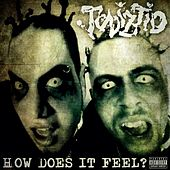 How Does It Feel? by Twiztid