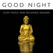 Play & Download Good Night - Sleep Music and Relaxing Sounds of Nature as Strategies to Fall Asleep Fast by Various Artists | Napster