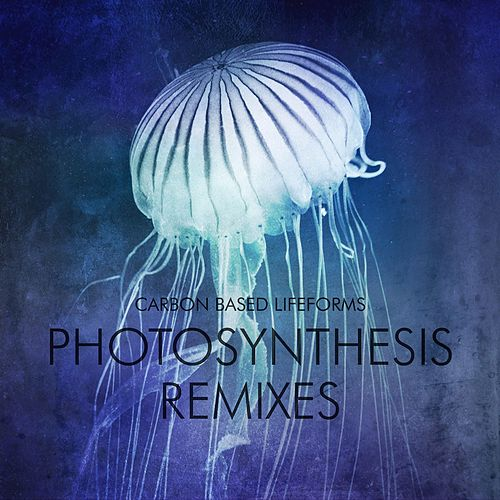 Play & Download Photosynthesis Remixes by Carbon Based Lifeforms | Napster