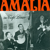 Play & Download Amália no Café Luso by Amalia Rodrigues | Napster