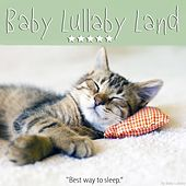 Baby Lullaby Land by Various Artists