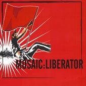 Liberator by Mosaic