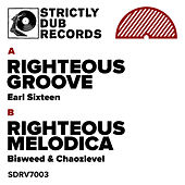 Righteous Groove / Righteous Melodica by Various Artists