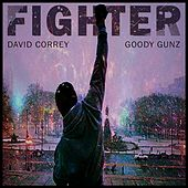 Play & Download Fighter (feat. Goody Gunz) by David Correy | Napster