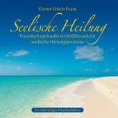 Play & Download Seelische Heilung: Spirituelle Wohlfühlmusik by Gomer Edwin Evans | Napster