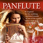 Panflute by Various Artists
