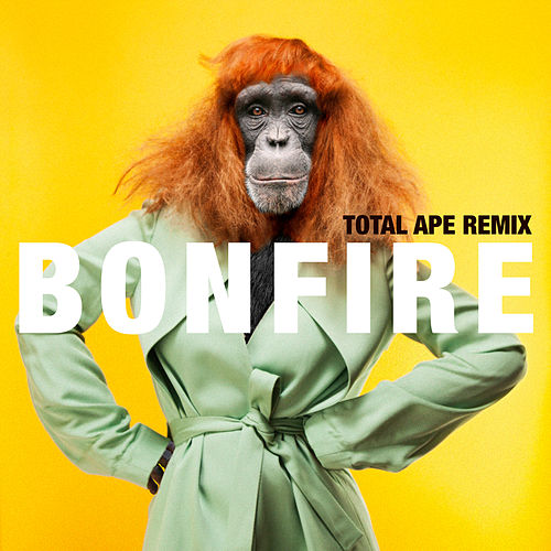 Play & Download Bonfire (Total Ape Remix) by Miss Li | Napster