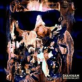 Play & Download Shahinam by Shahin Najafi | Napster