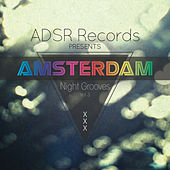 Play & Download Amsterdam Night Grooves, Vol. 3 by Various Artists | Napster