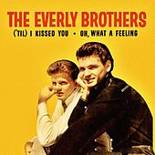 ('Til) I Kissed You by The Everly Brothers