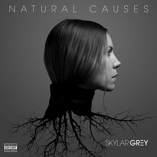 Natural Causes by Skylar Grey