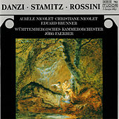 Play & Download Danzi, Stamitz & Rossini: Music for Flute, Clarinet & Orchestra by Various Artists | Napster