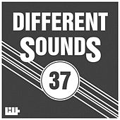 Play & Download Different Sounds, Vol. 37 by Various Artists | Napster